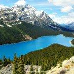 Fantastic Friday – Wolf Lake?