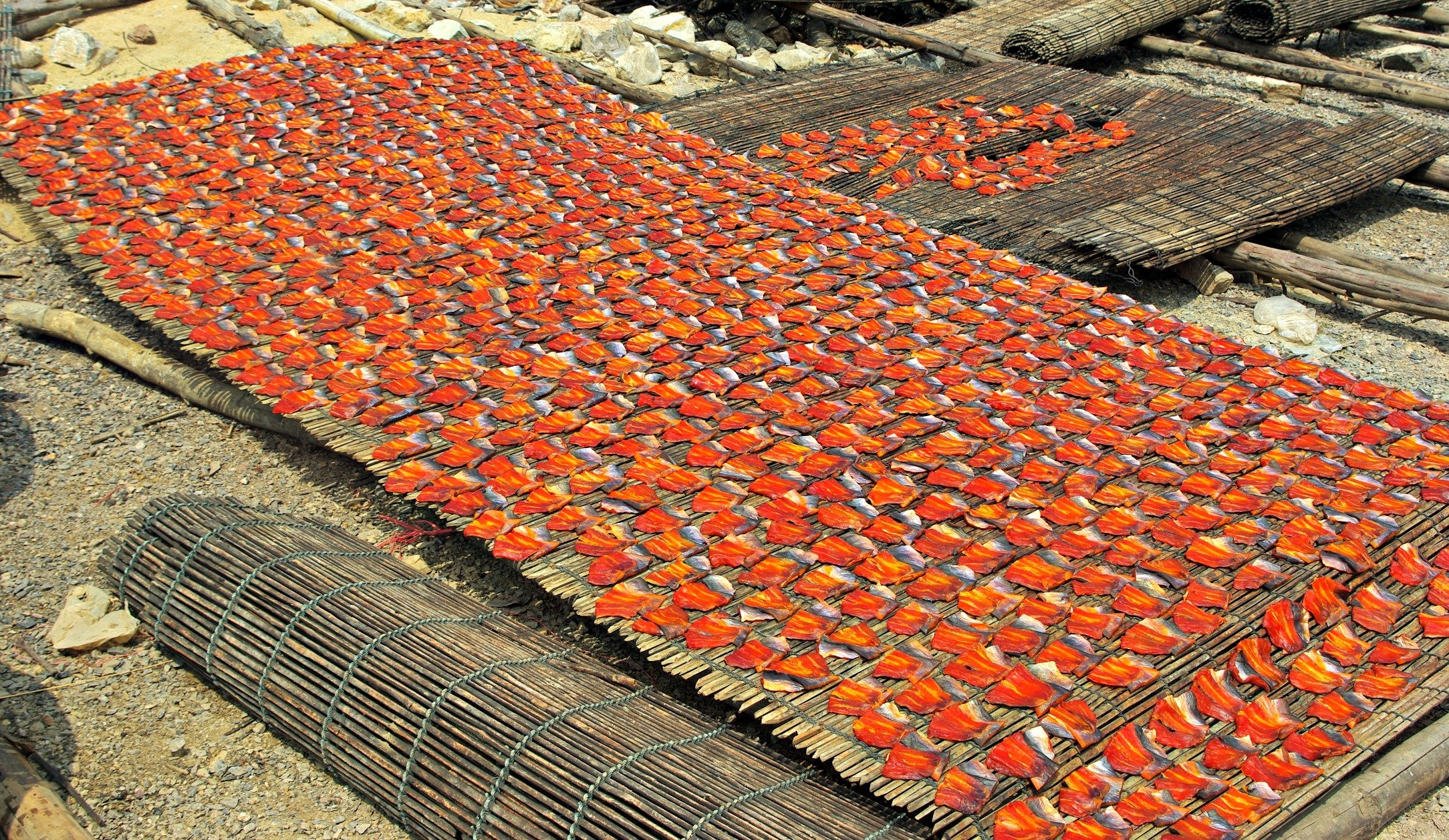 Fantastic Friday and Cambodian Fish Fillets drying in the Sun