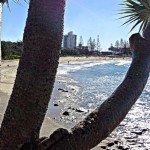 Sunshine Coast Food with a View