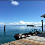 Snorkelling and Fishing at Pelorus Island and Orpheus Island