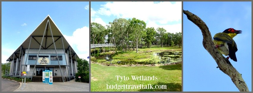 Tyto Wetlands in Ingham is a great place to visit from Townsville