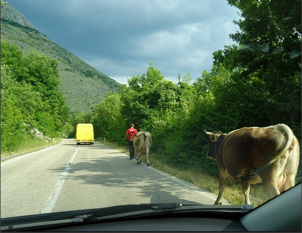 Following the Yellow Bus to Trebinje BiH