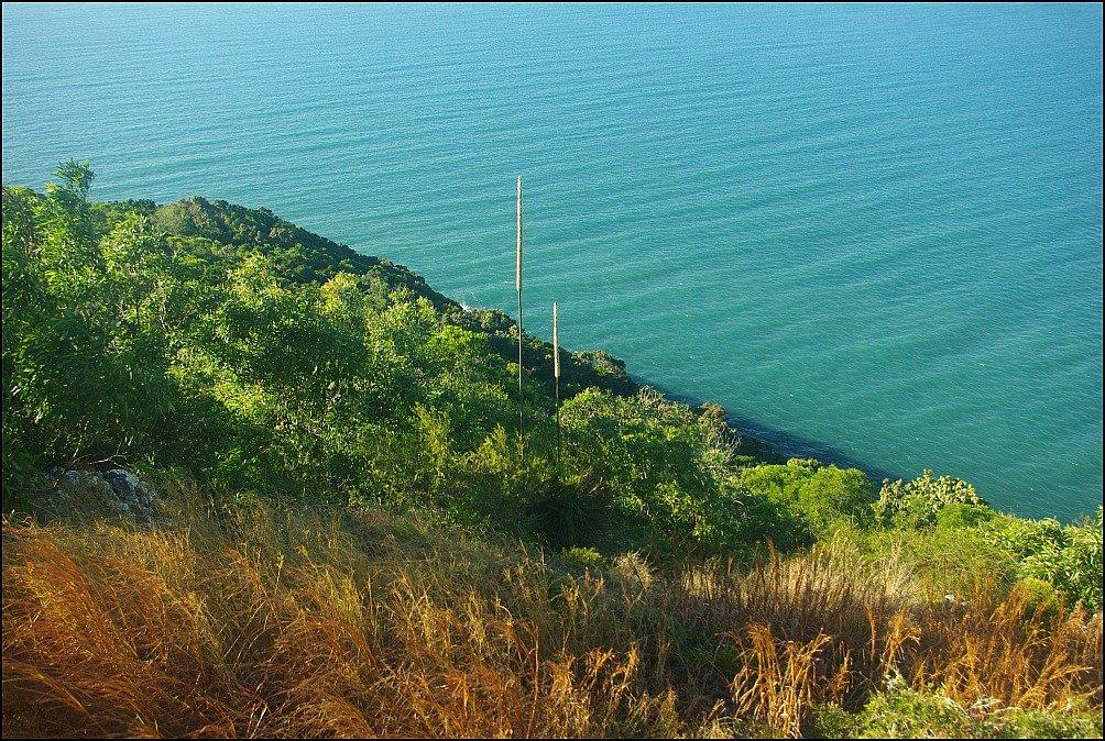 Cape Hillsborough Ocean Views