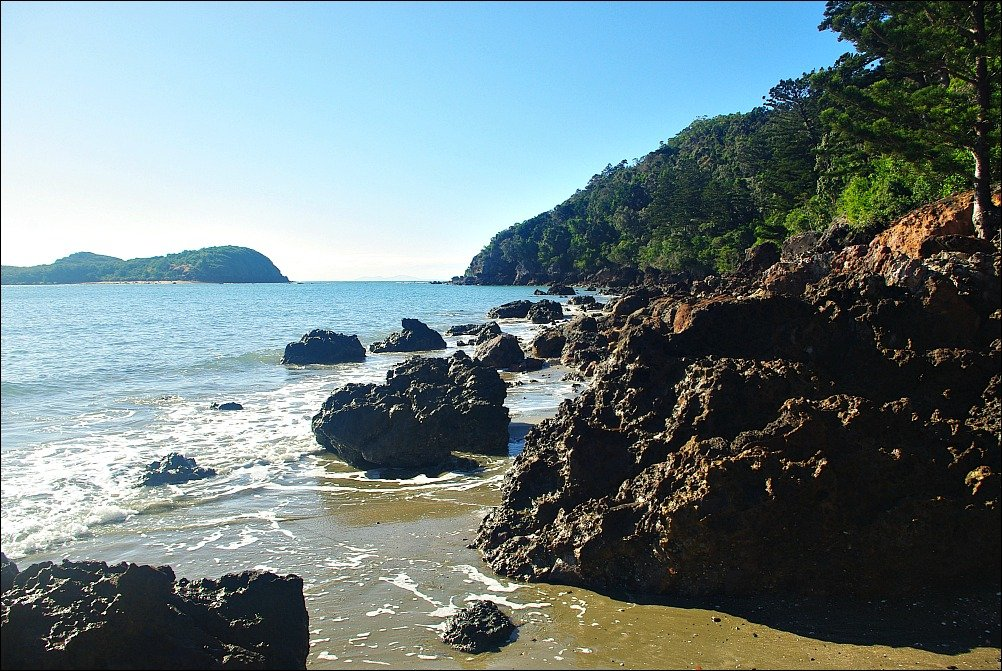 Looking back to Wedge Island and our walk back from Cape Hillsborough north of Mackay Australia