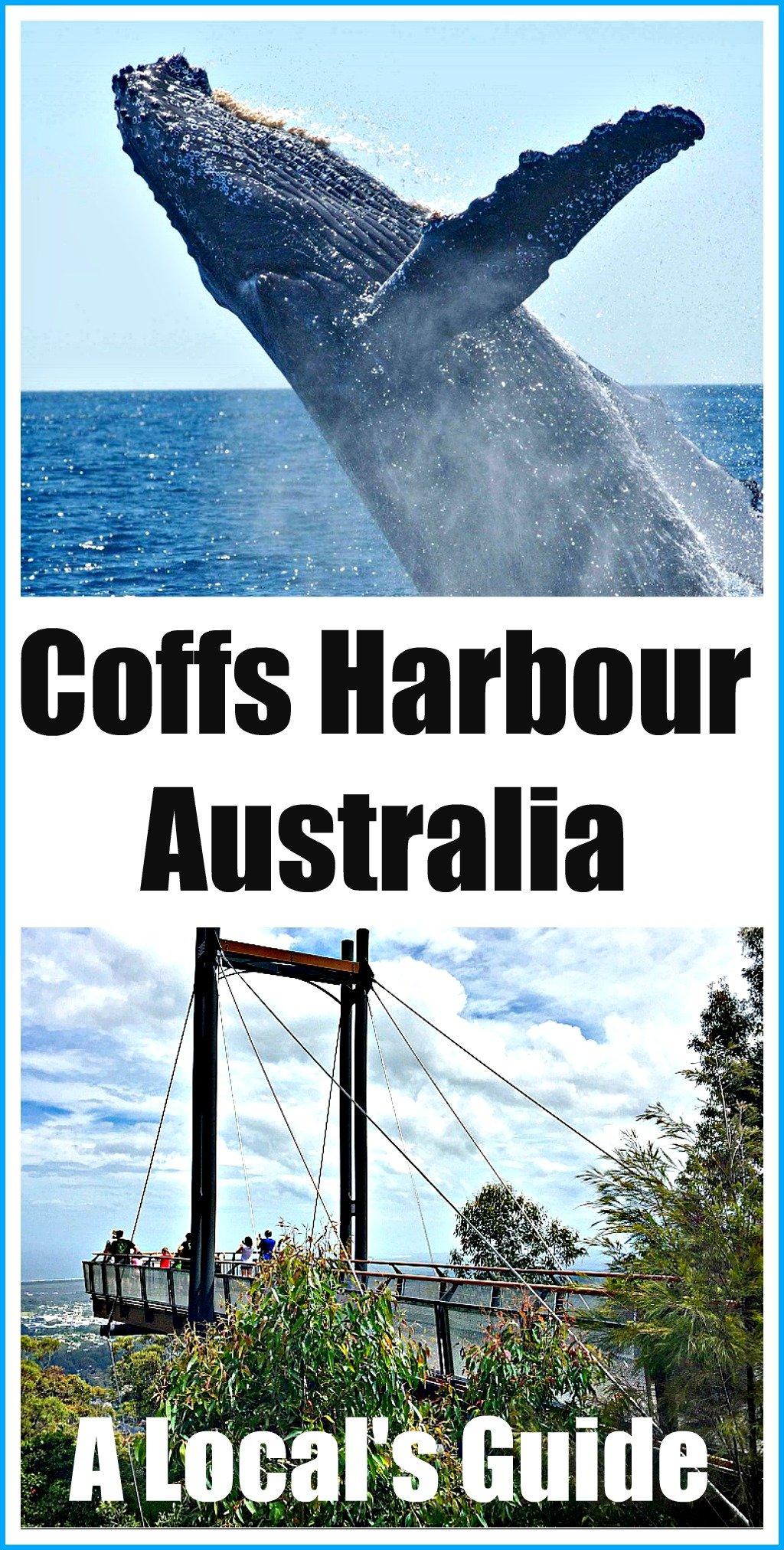 Coffs Harbour Australia A Local's Guide