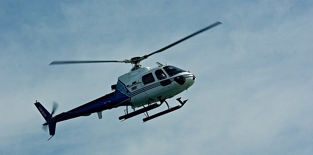 Helicopters added to our excitement when whale watching on the Gold Coast