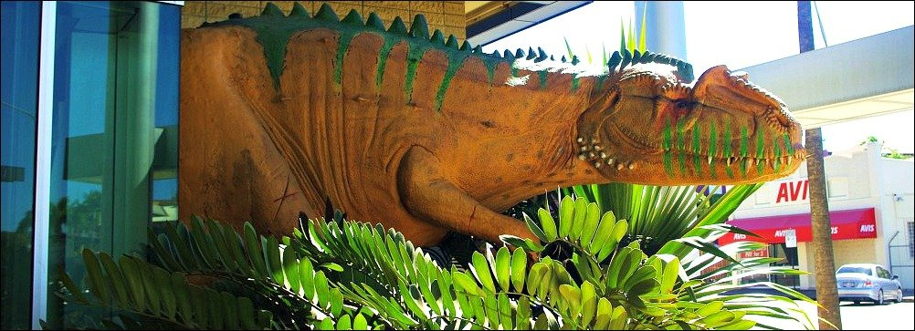 Visiting the Townsville Museum of Tropical Queensland is a fun thing to do with kids in Townsville