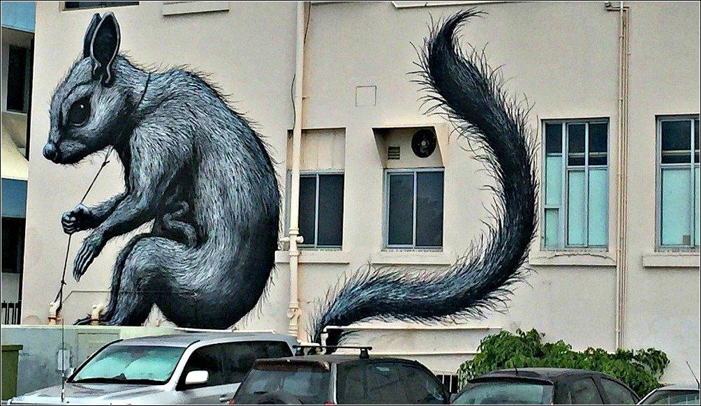 ROA Street Art near Hoi Polloi Cafe Townsville